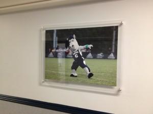 Standoffs - Longwood University Sports Department